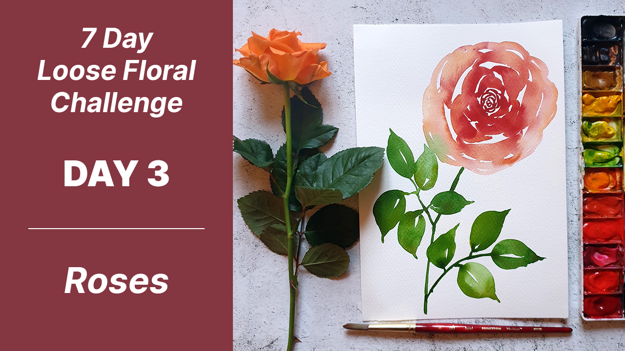 7 day floral challenge watercolor day 3 rose