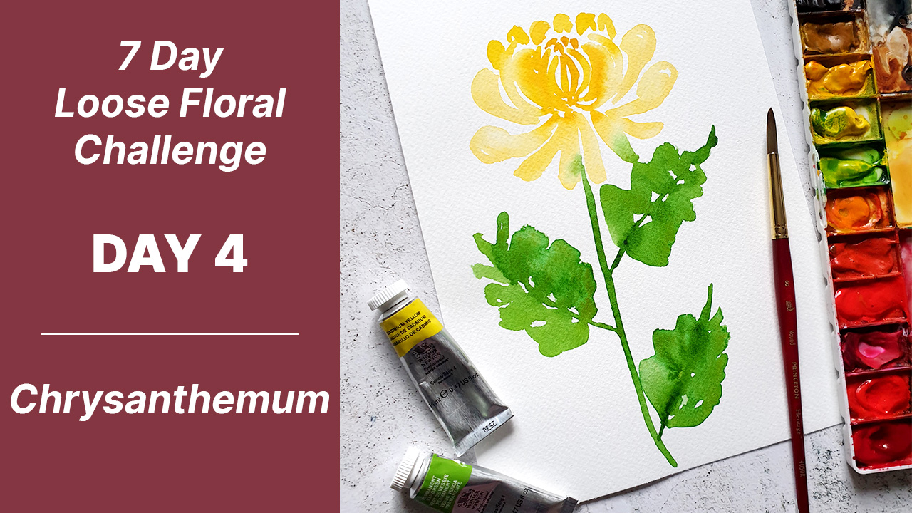 7 day floral challenge watercolor day 4 chrysanthemum