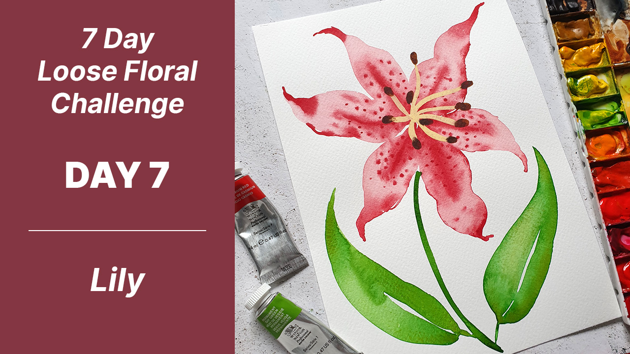 7 day floral challenge watercolor day 7 lily