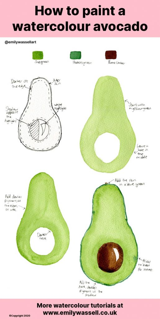How-to-paint-a-watercolour-avocado-emily-wassell