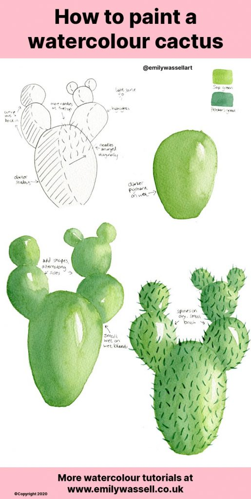 How-to-paint-a-watercolour-cactus-emily-wassell