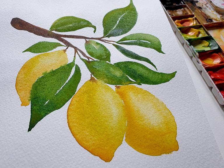 rough watercolor paper