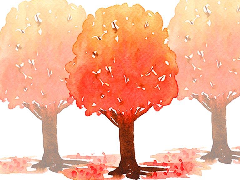 watercolour fall autumn trees