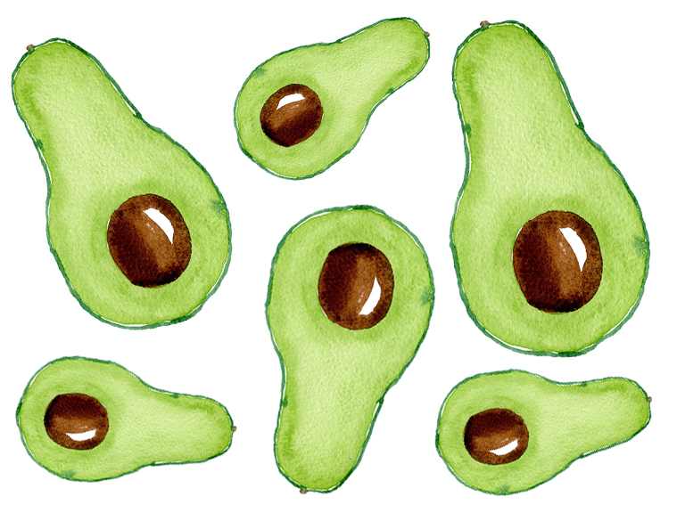 watercolour-tutorial-avocado