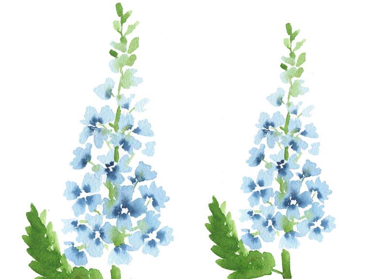 watercolour tutorial delphinium flowers